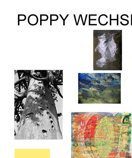 Photography, photos, paintings in Senegal, Vienna and Paris - Poppy Wechsberg